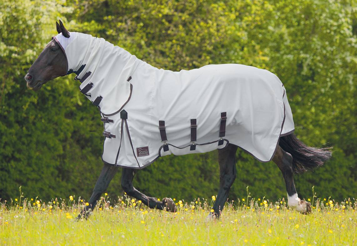 OPEN BOX ITEM: Shires Sweet-Itch Combo