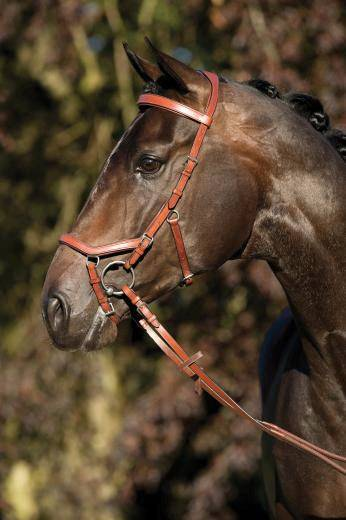 Rambo Micklem Competition Reins
