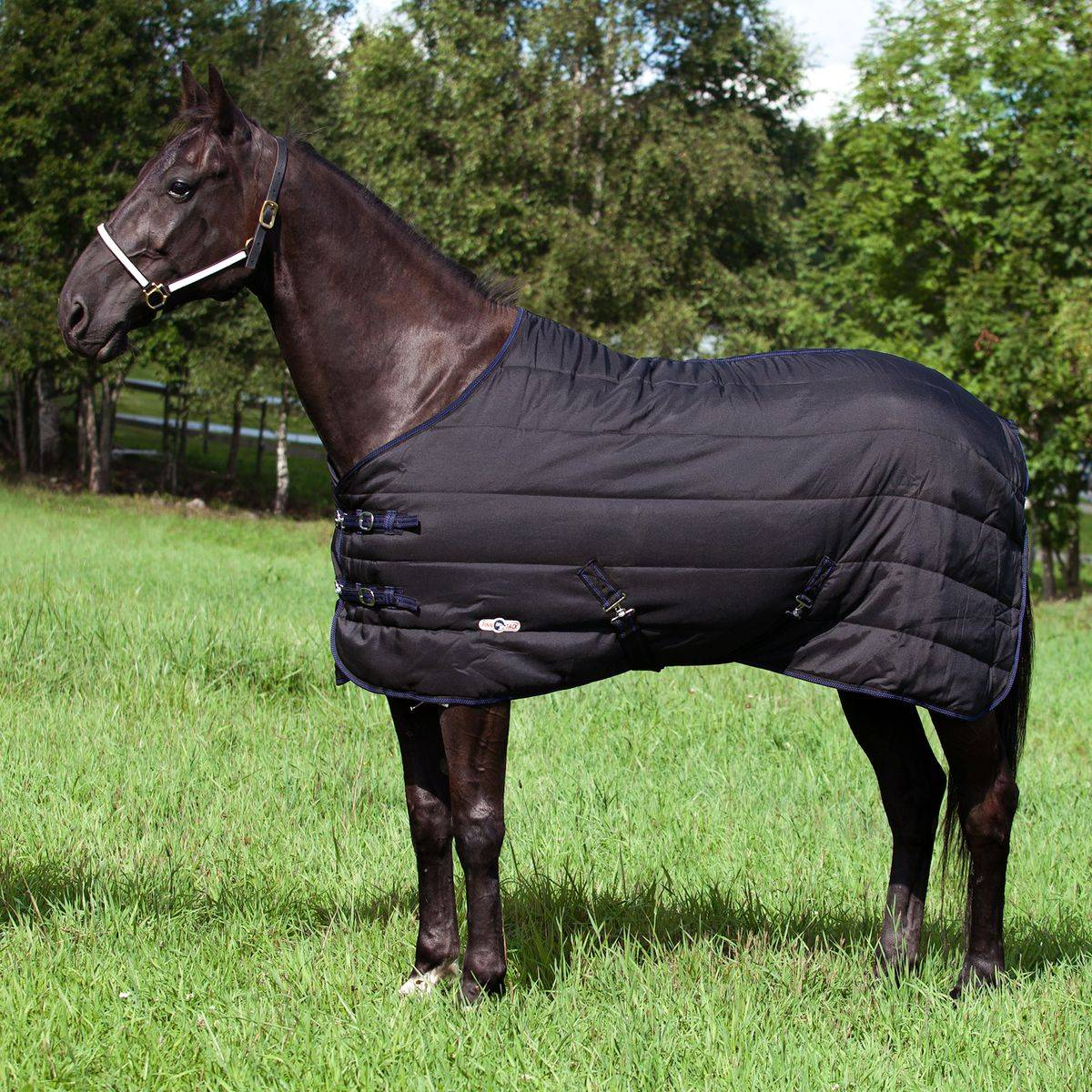 Finn Tack Thermo Stable Blanket