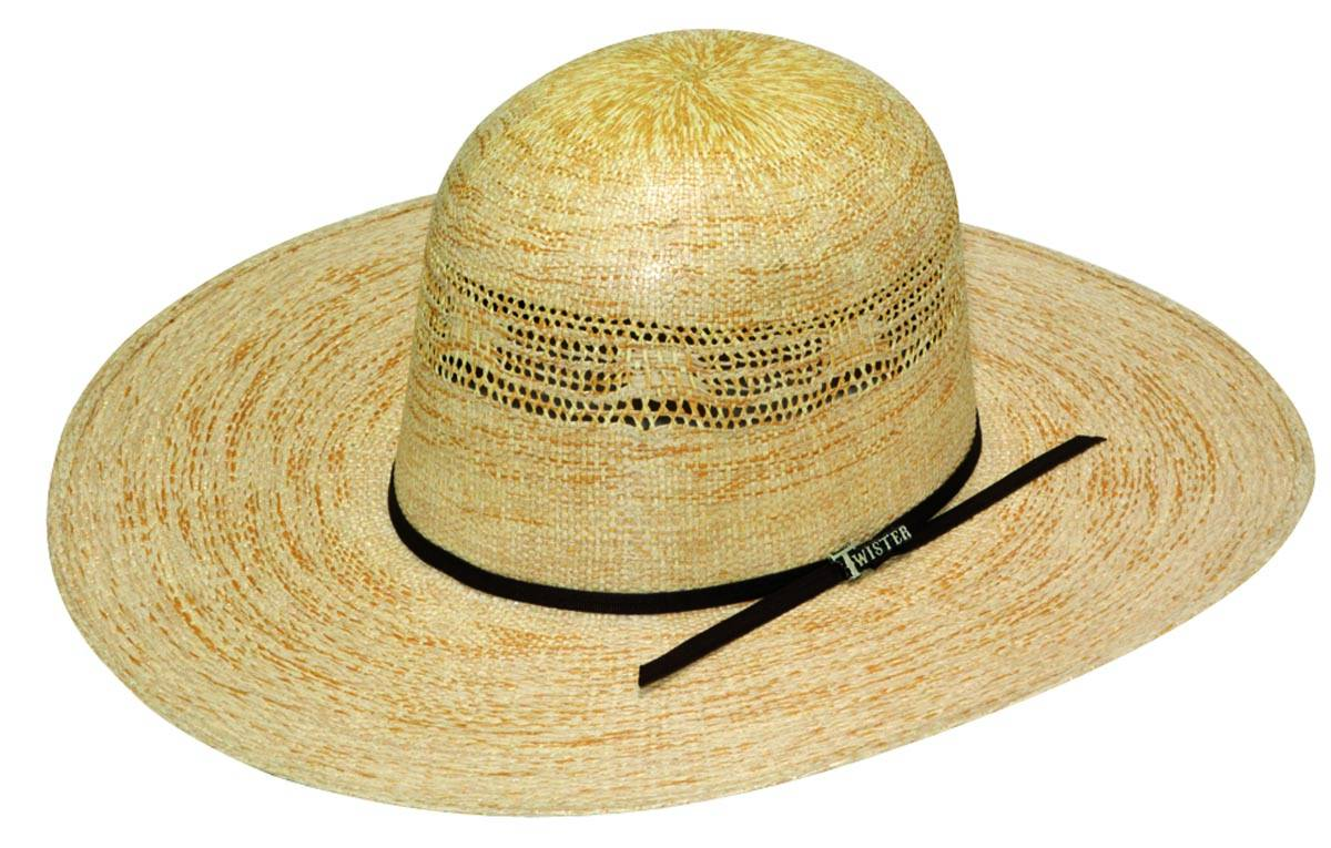 Twister Men's Bangora Western Hat