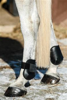 Nunn Finer Hampa Fetlock Boot