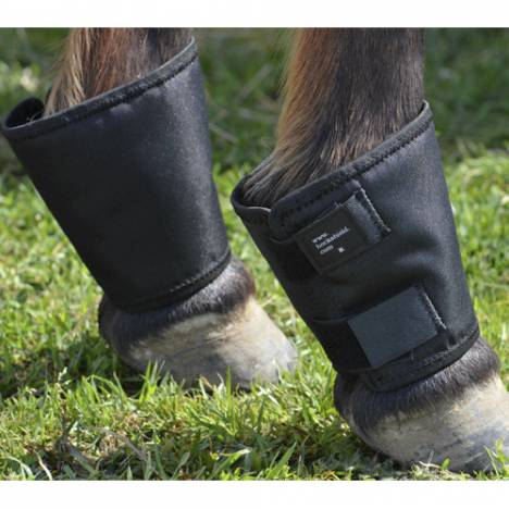 Intrepid Fetlock Shields
