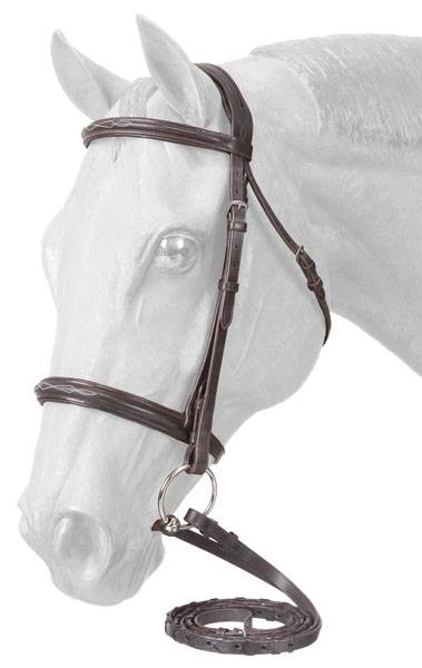 EquiRoyal Premium Padded Fancy Stitched Raised English Bridle