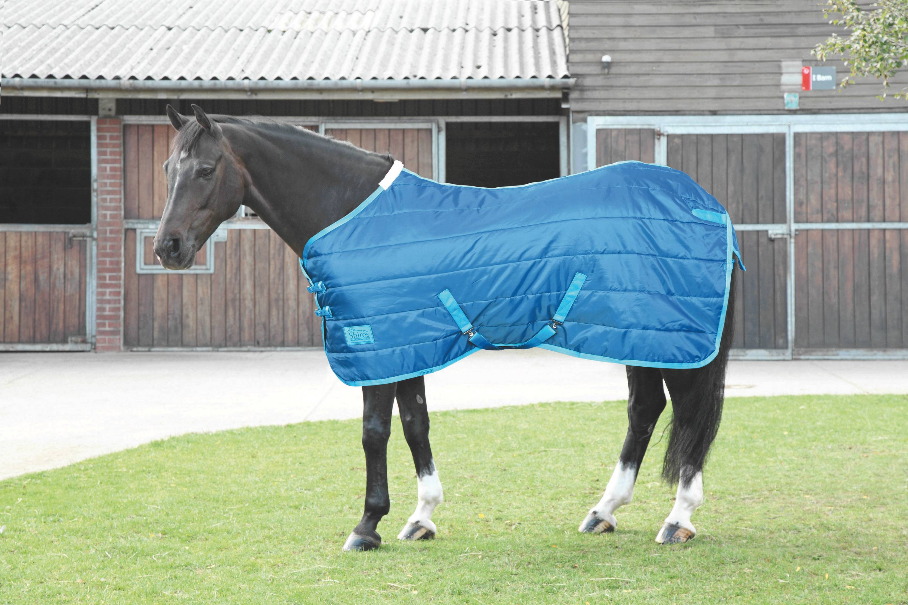 Shires Tempest 100 Lightweight Stable Blanket