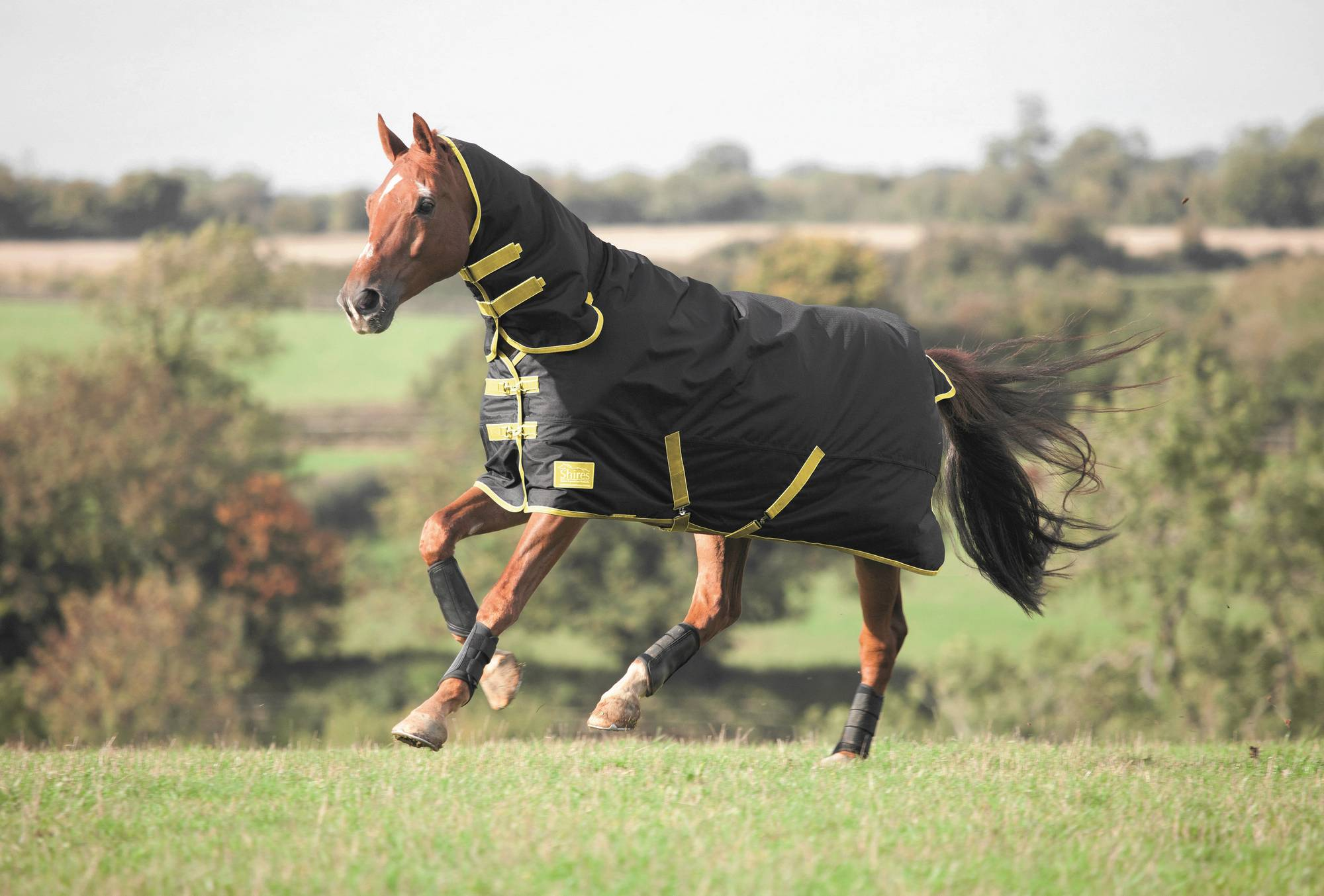Shires Tempest 100 Combo Turnout Blanket