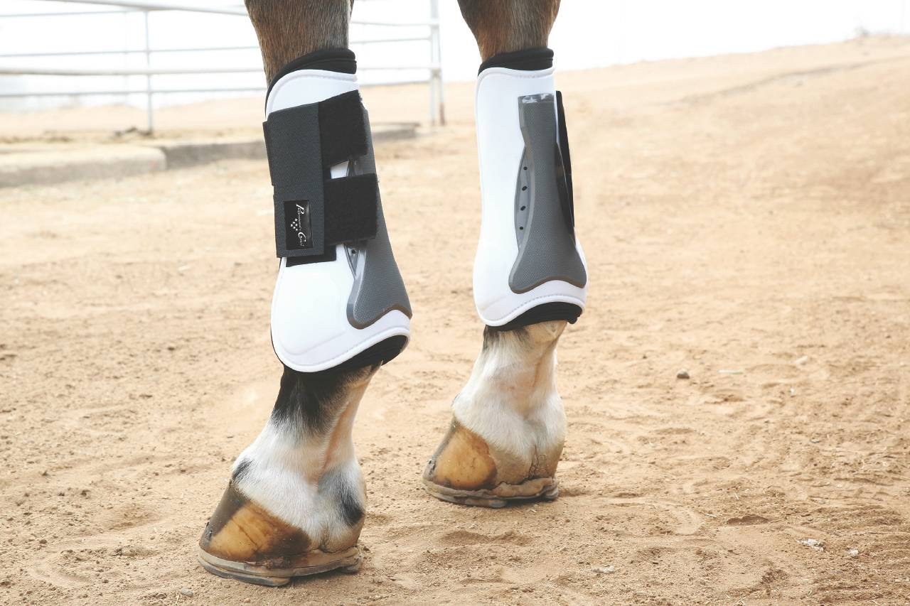 $10 OFF Professional's Choice Tendon Open Front Air Shock Boot