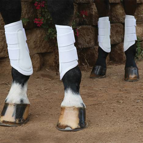 Professional's Choice Pro Mesh Sport Schooling Boot