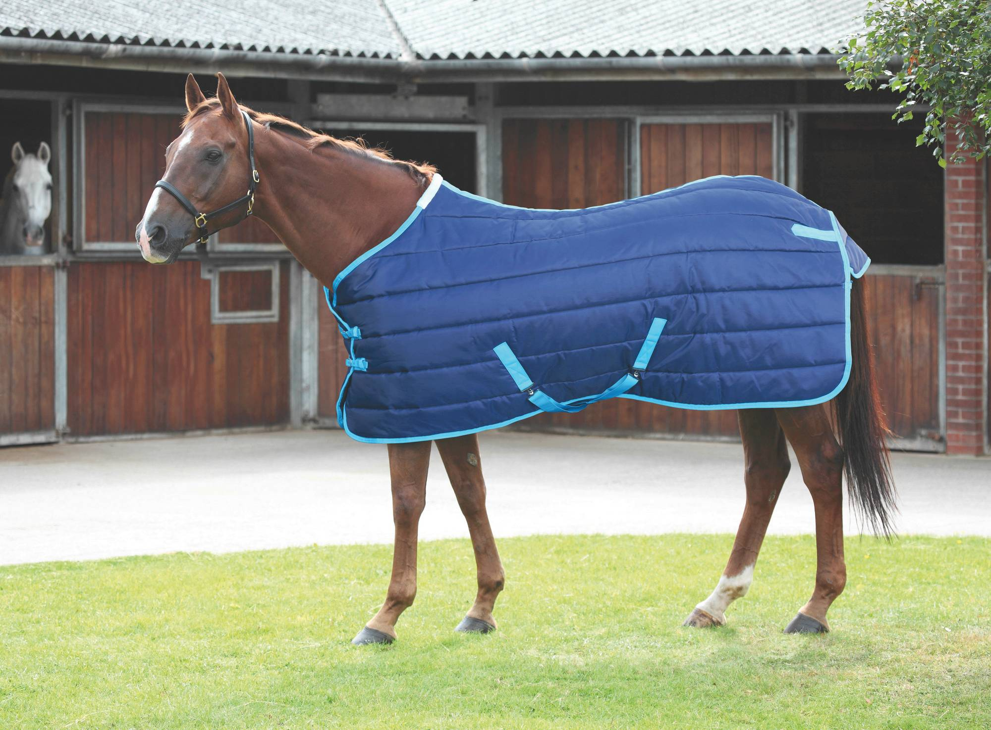 Shires Tempest 200G Stable Blanket