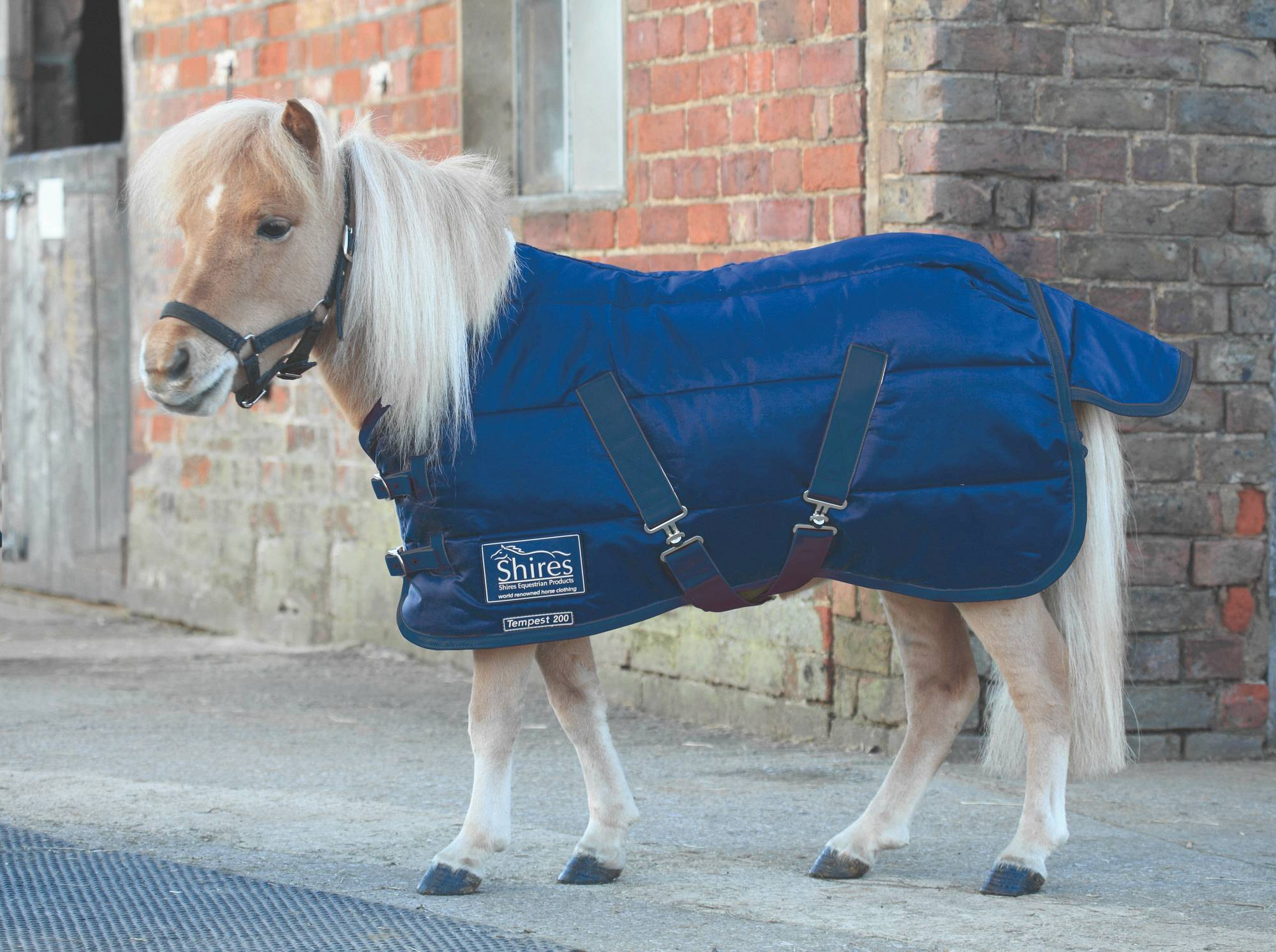 Shires Tempest Miniature 200 Stable Blanket