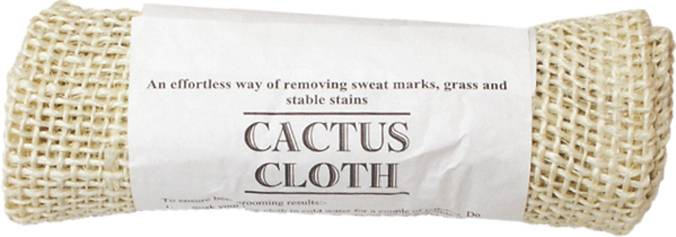 Action Cactus Cloth