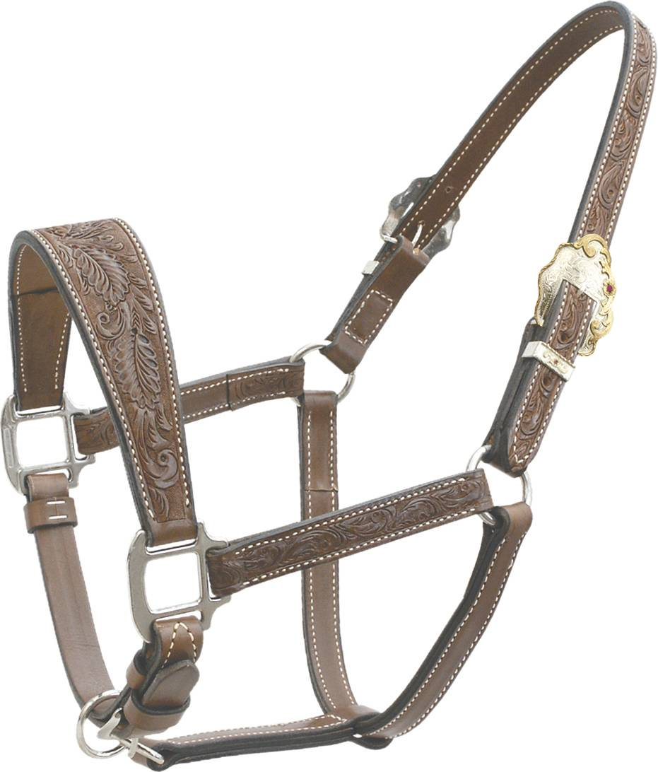 Billy Cook Floral Tooled Show Halter with Wide Noseband