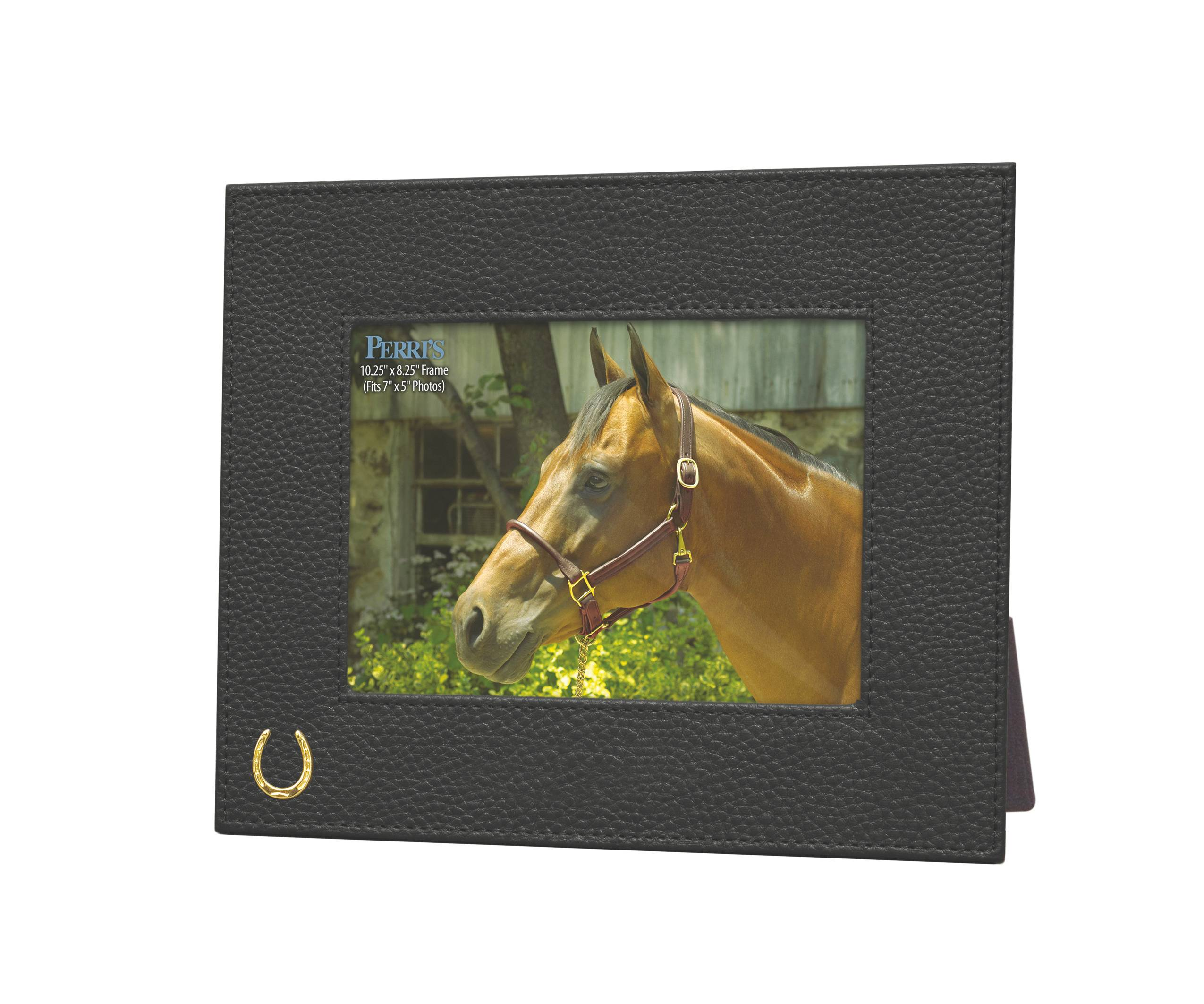 Perri's Picture Frame with Horse Shoe Accent