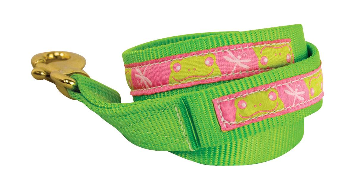 Perri's Nylon Ribbon Lead