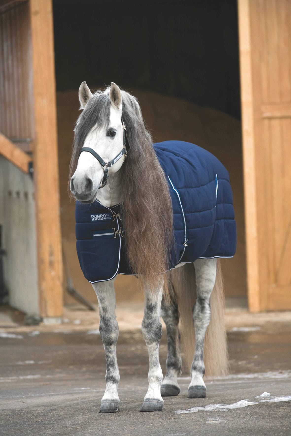 Rambo Stable Blanket - 200g