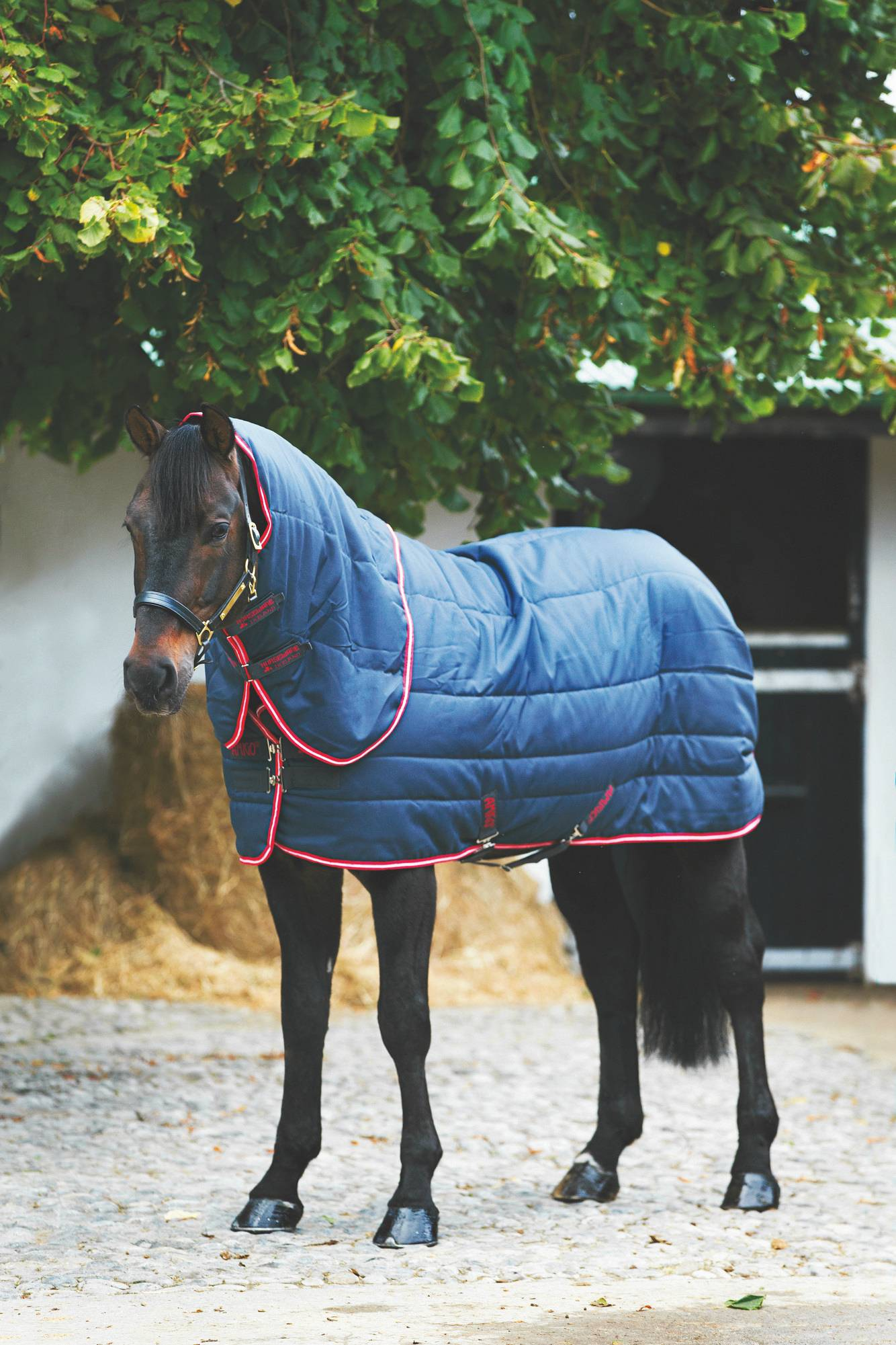 Amigo Vari-Layer Plus Stable Blanket - Medium