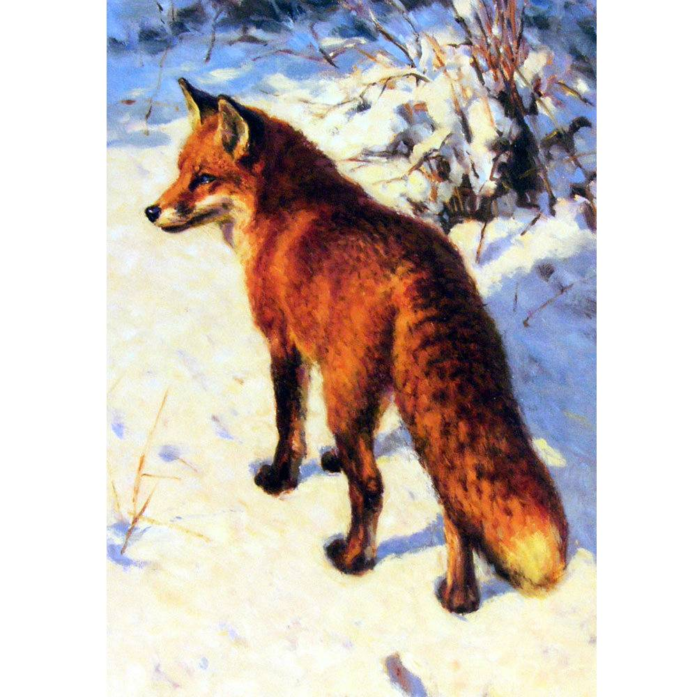 Fox and Fox Hunting - Footprints in the Snow - 6 Pack