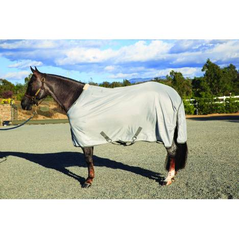 Equisential Fly Sheet