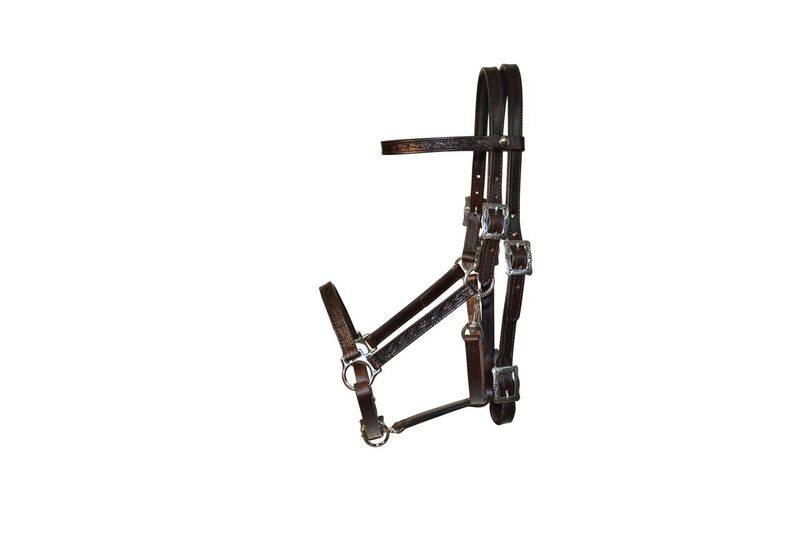 Tucker Horizon Halter Bridle
