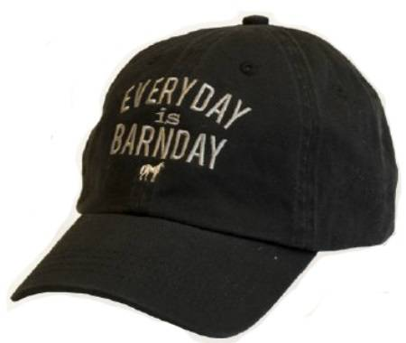 Stirrups Youth Everyday Is Barnday Embroidered Cap