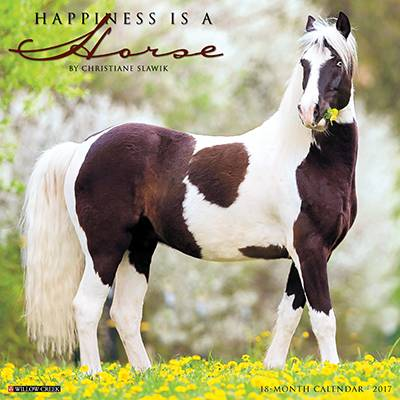 Happniess Is A Horse 2017 18 Month Calendar