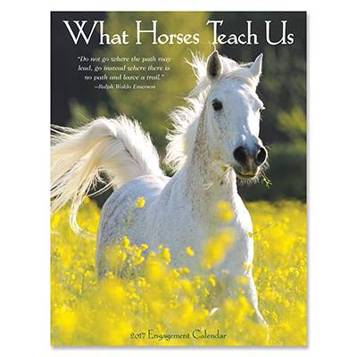What Horses Teach Us 2017 Engagement 12 Month Calendar