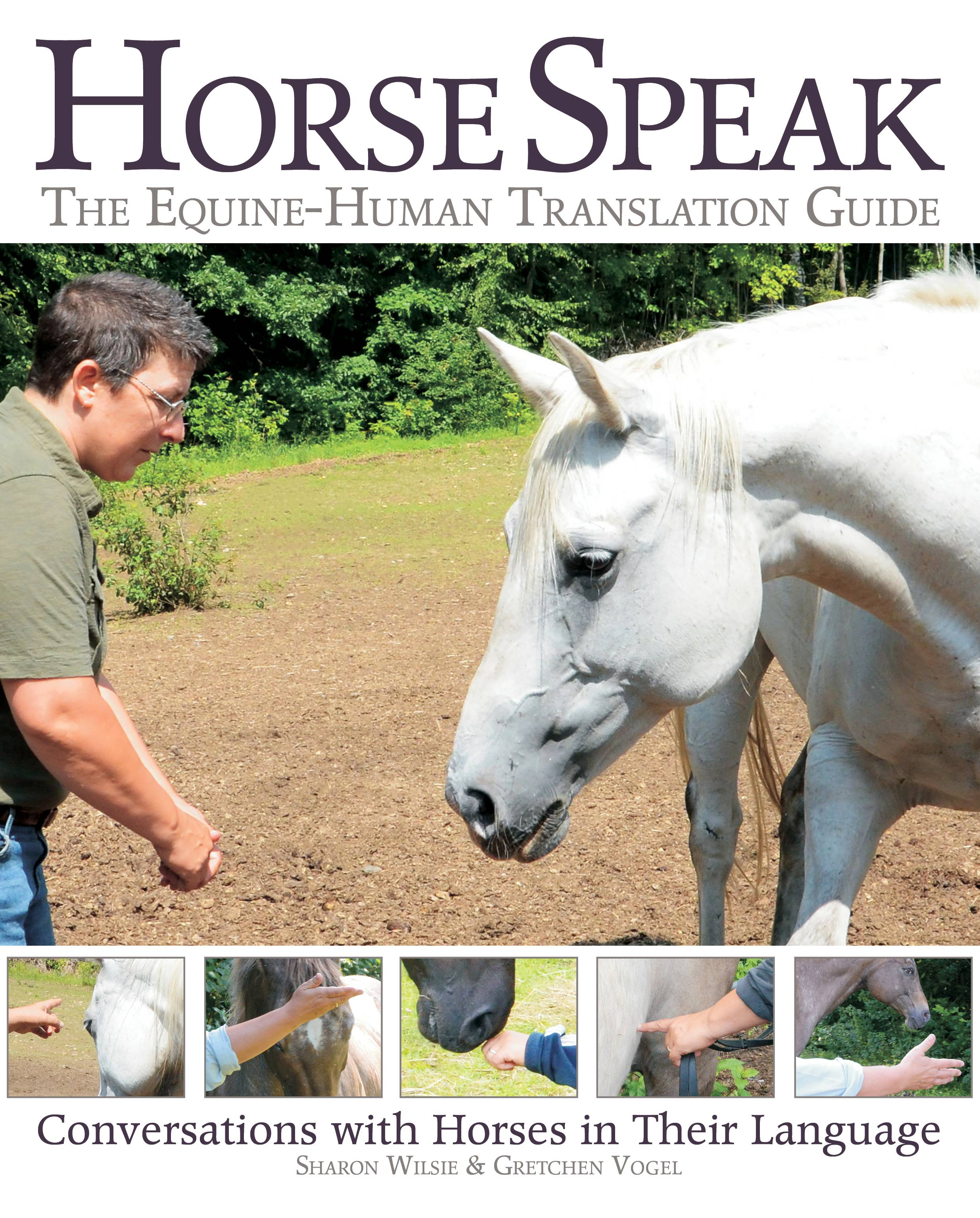 Horse Speak: The Equine Human Translation Guide