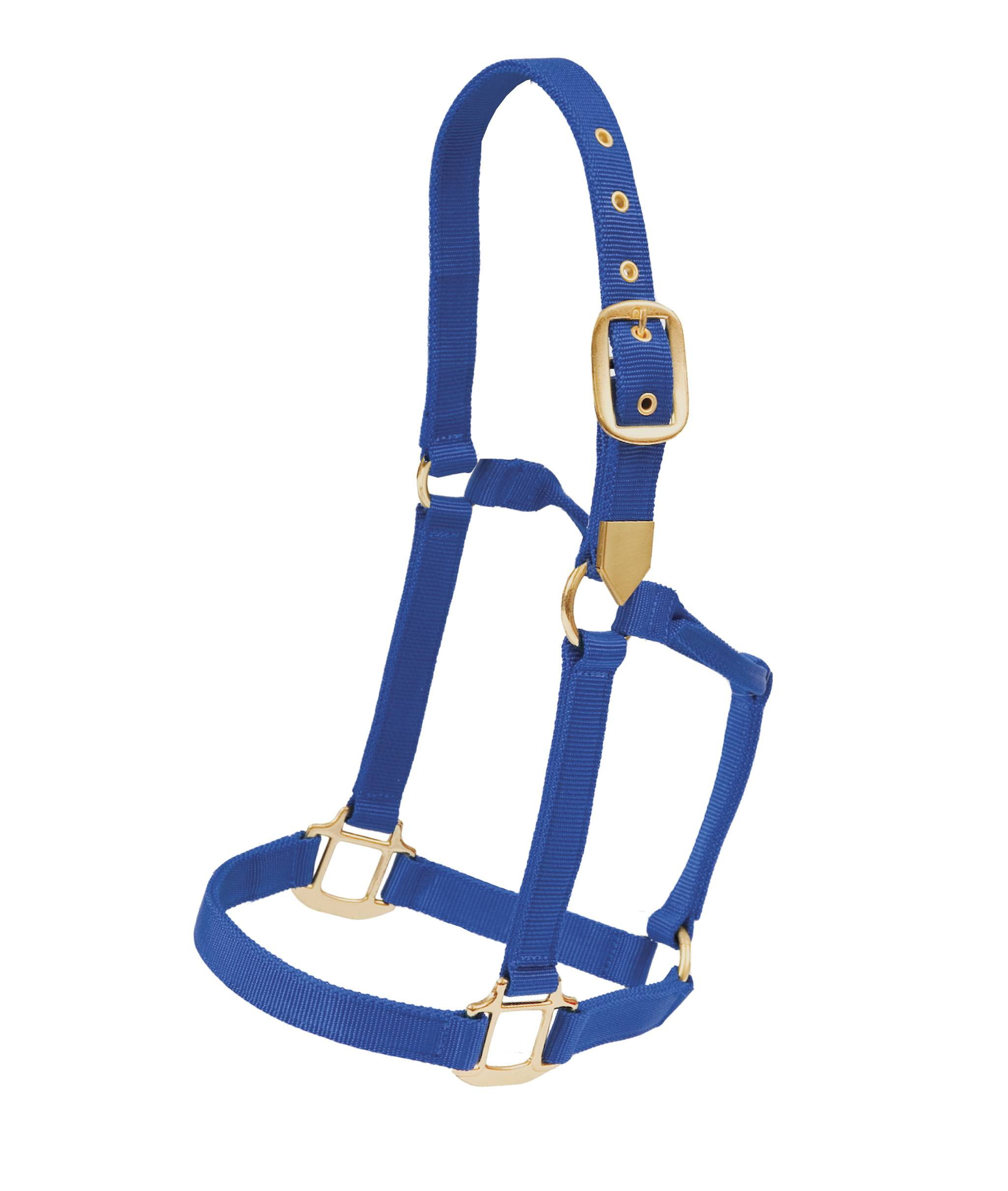 Colorado Saddlery White Stallion Hi Country Nylon Halter