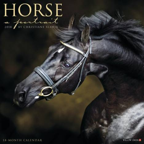 Kelley Horse A Portrait 2018 Calendar- 18 Month