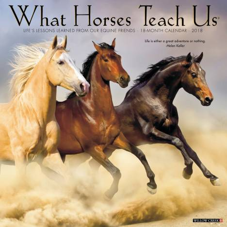 Kelley What Horses Teach Us 2018 Calendar- 18 Month