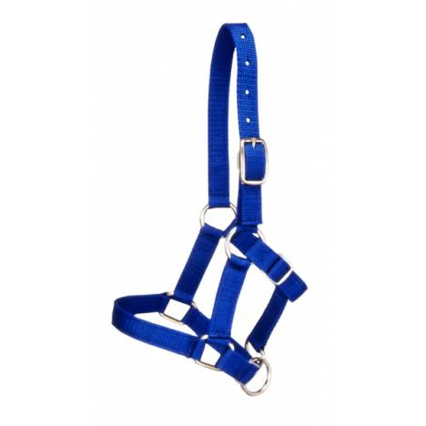 Tough-1 Miniature Halter 12 Pack