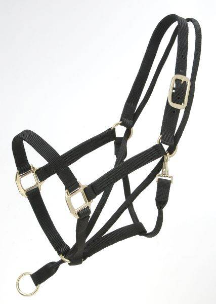 Tough-1 Eagle Equine Pull-Back Halter