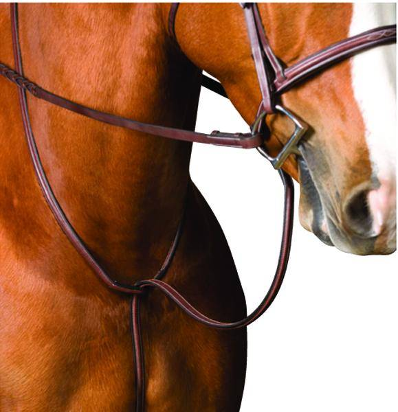 Collegiate Raised Standing Martingale