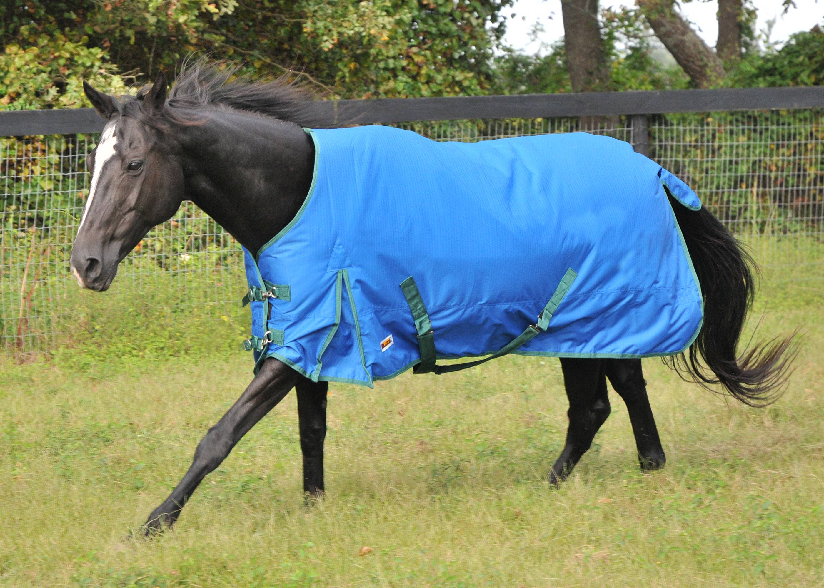 McAlister 600D Waterproof Medium Weight Turnout Blanket