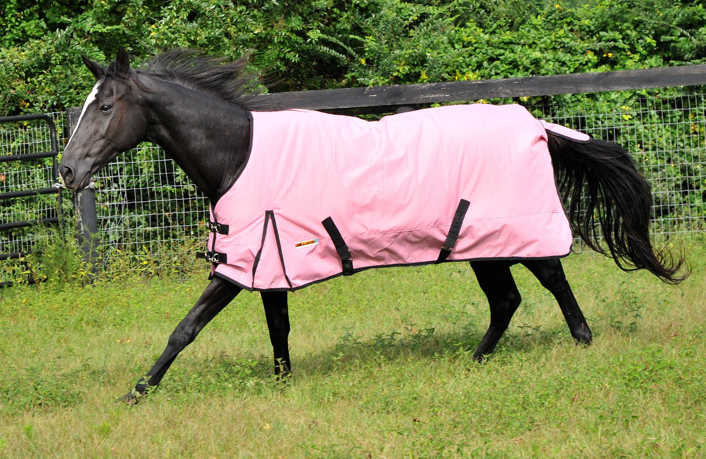 McAlister 600D Diamond Ripstop Waterproof Heavyweight Turnout Blanket