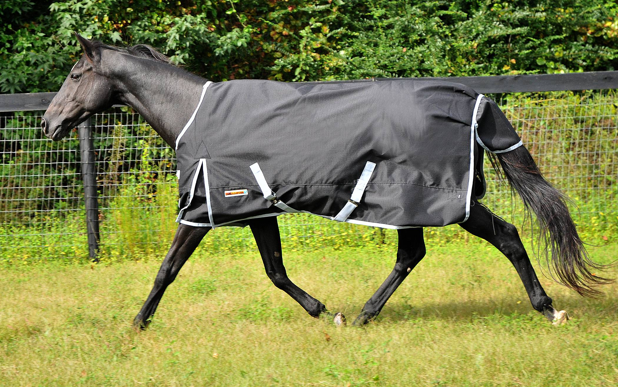 McAlister 1200D Ripstop Waterproof MW Turnout Blanket
