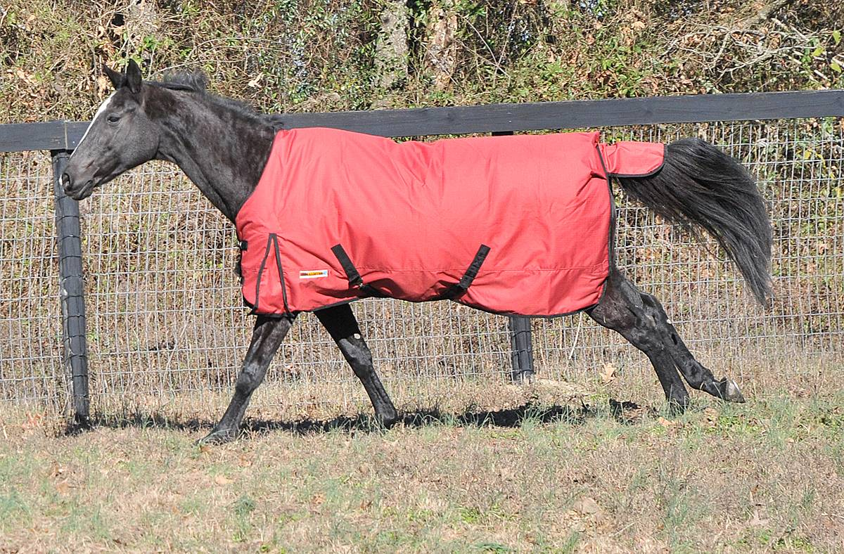McAlister 600D Medium Weight Waterproof Turnout Blanket