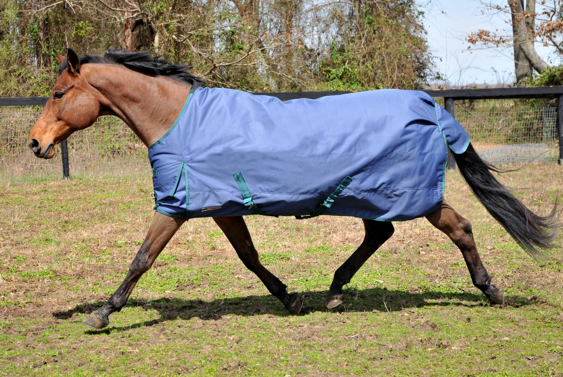 McAlister 1200D Heavyweight Waterproof Turnout Blanket