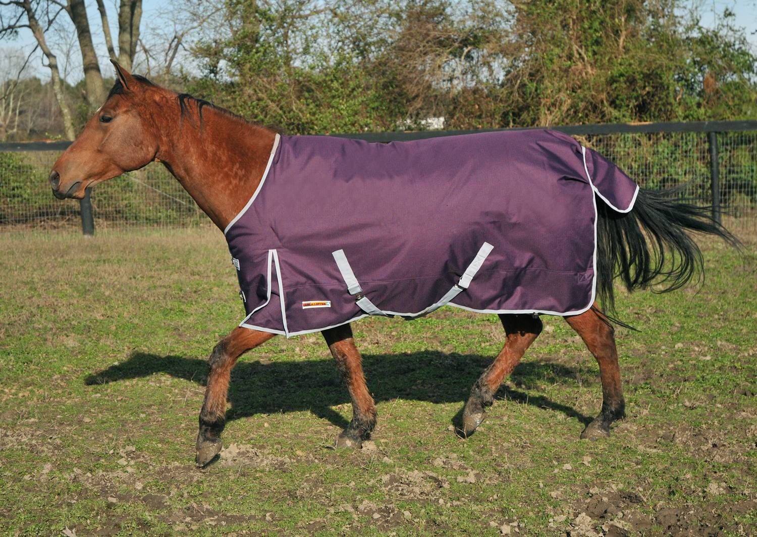 McAlister 1200D Medium Weight Waterproof Turnout Blanket