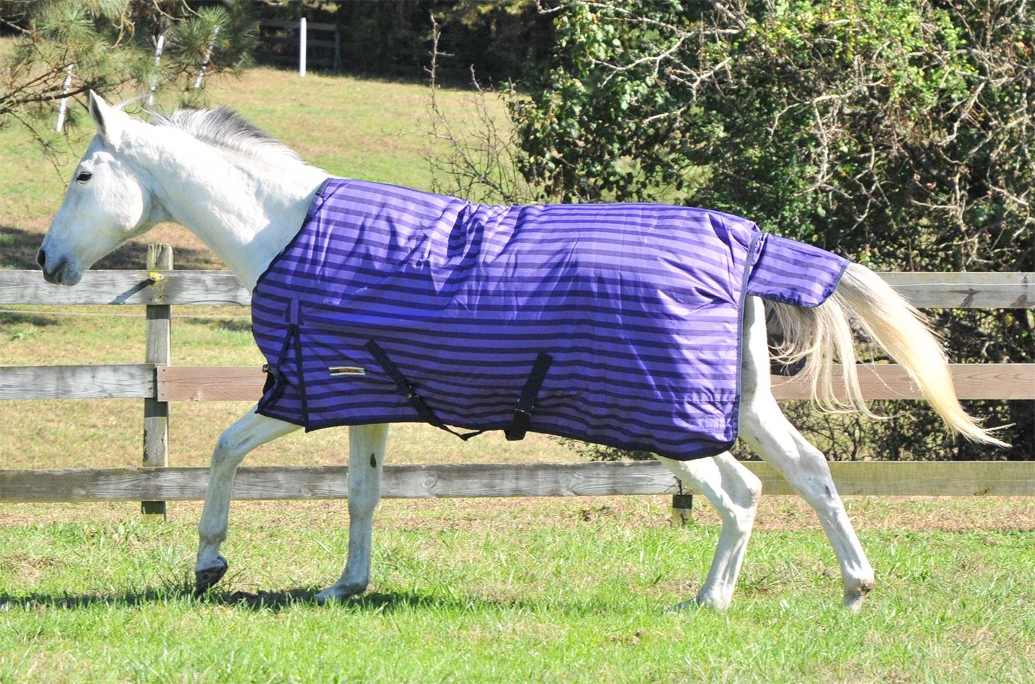 McAlister 600D Waterproof HW Turnout Blanket