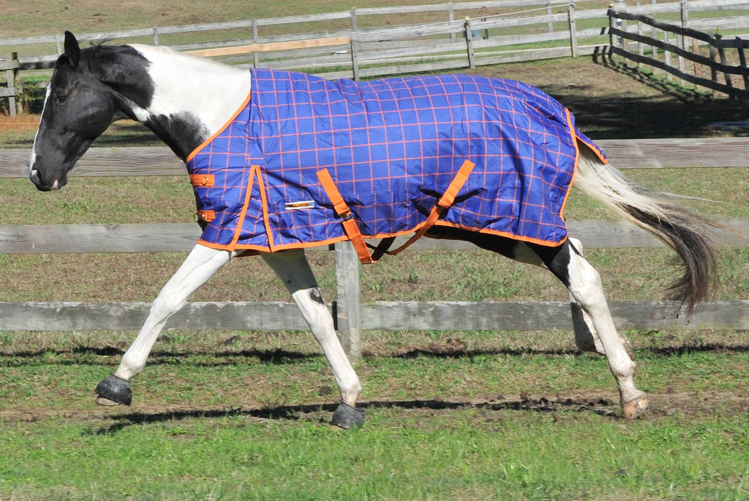 McAlister 600D Waterproof Mediumweight Turnout Blanket
