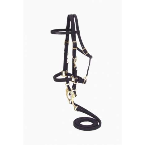Australian Outrider Collection Nylon Bridle/Halter Combination