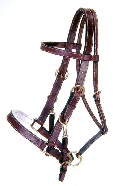Australian Outrider Collection Leather Bridle/ Halter Combination