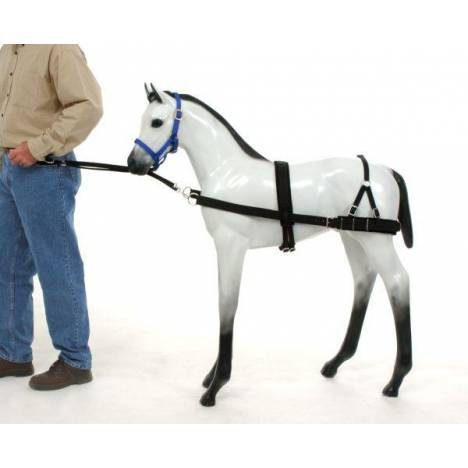 Tough-1 Foal Training Device