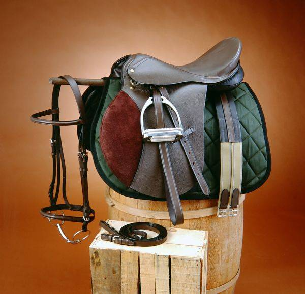 EquiRoyal Regency All Purpose Saddle Package