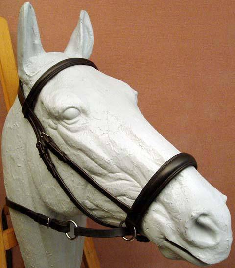 Dr. Robert Cook Bitless Bridle Padded Leather Headstall
