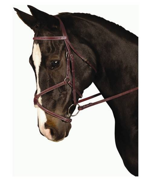 Kincade Padded Figure 8 Bridle