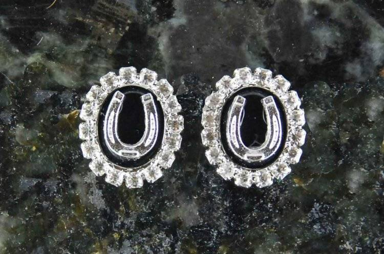 Finishing Touch Black Onyx Stone In Crystal Frame with Horseshoe Earrings