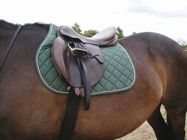 Rambo Square Saddle Pad