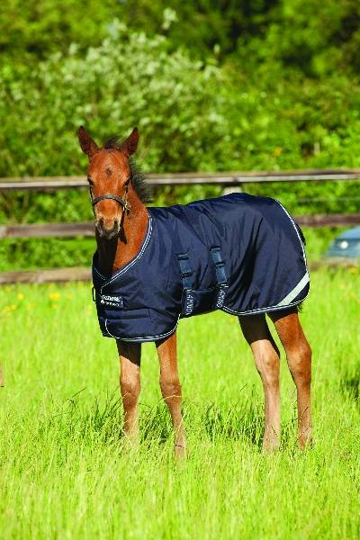 Amigo Foal Turnout Blanket