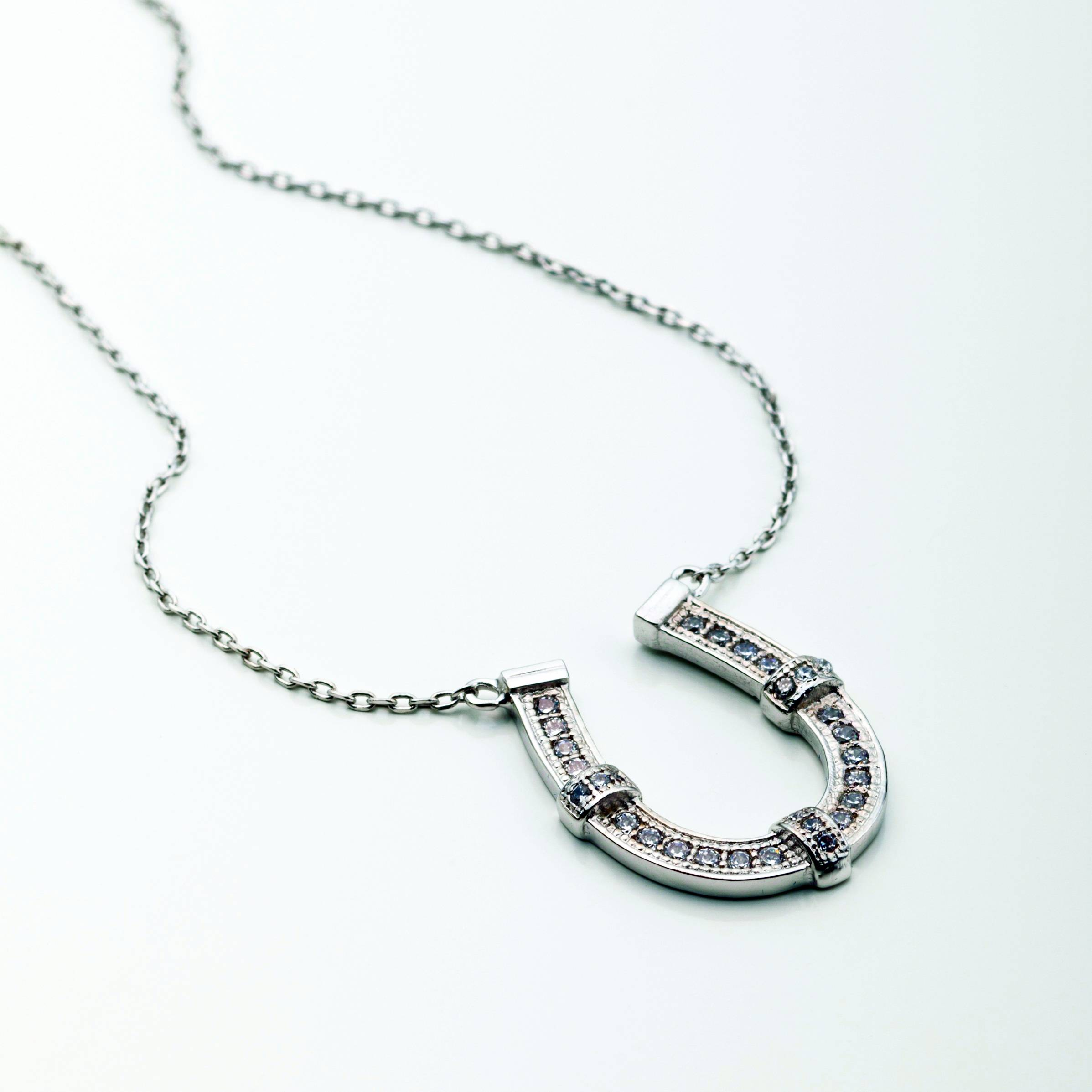 Horseshoe Encrusted with Clear CZ Necklace